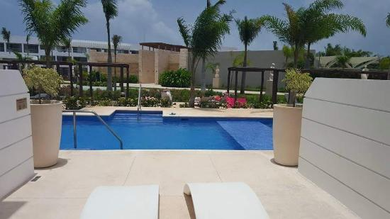 Platinum Yucatan Princess All Suites & Spa Resort: View from our swim out - room 2014