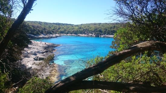 Fiscardo, Grecia: View from woodland walk