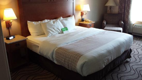 La Quinta Inn & Suites Great Falls: Room View