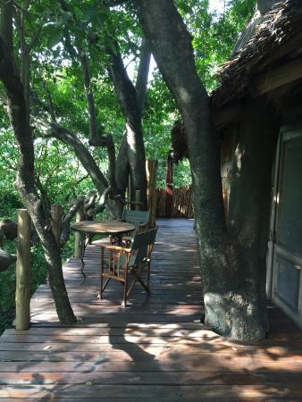 andBeyond Lake Manyara Tree Lodge: View from tree house