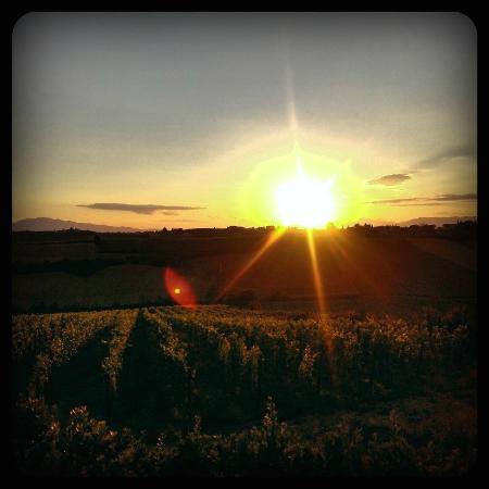 Agriturismo Borgo Vigna Vecchia: Sunset