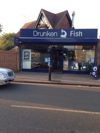 The drunken fish datchet omd men om restauranger for Drunken fish menu