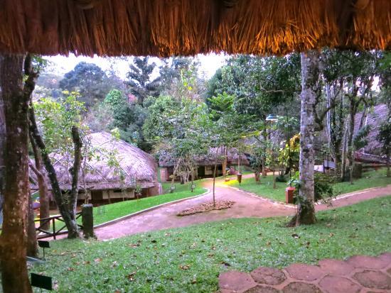 Spice Village: alles ist üppig und grün. Dazwischen hopsten die Affen von Dach zu Dach