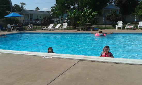 Lillian, AL: The pool is nice and clean