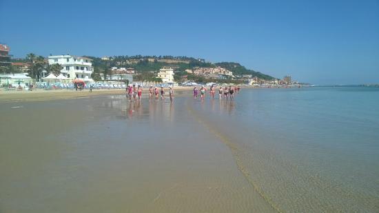 la spiaggia - Picture of Residence Hotel Le Terrazze, Grottammare ...