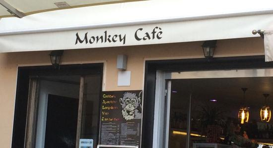Monkey Cafe Laigueglia
