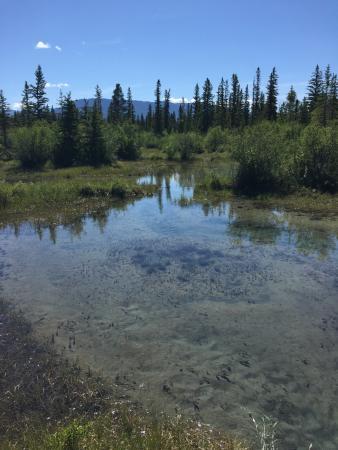 Thunder Hill Provincial Park