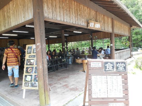 Banshu Yamasaki Hana Iris Garden : 園内の食堂、おすすめ