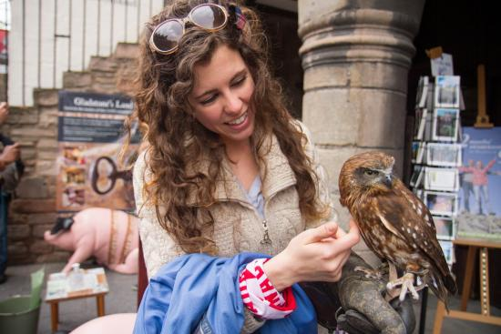 Gladstone's Land: Owls and Falcons outside the museum