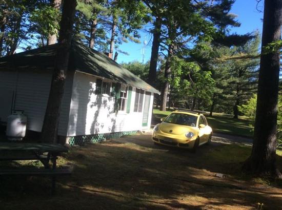 Hinckley's Dreamwood Cabins: We loved Hinckley's!