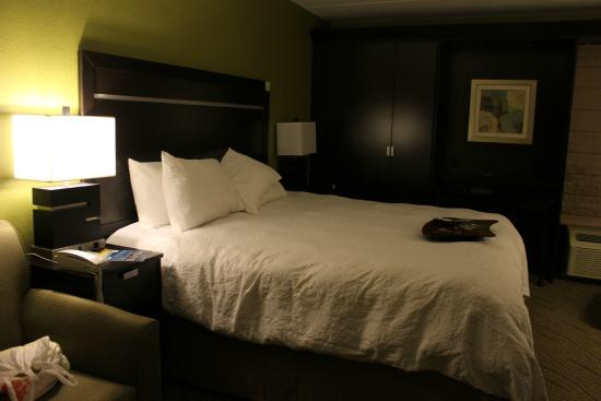 Hampton Inn Cadillac : King room