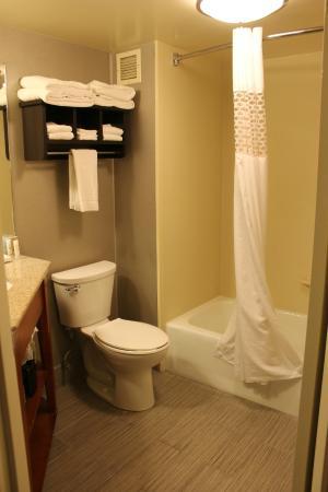 Hampton Inn Cadillac: Bathroom