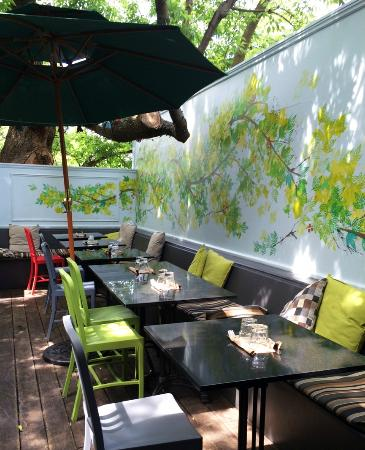 Patio Picture Of Harvest Kitchen Toronto Tripadvisor