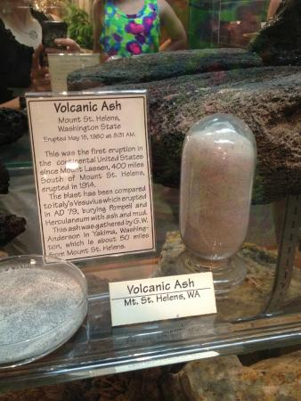 Cook's Natural Science Museum : volcanic ash