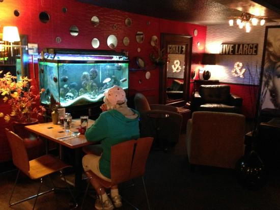 T Paul's Urban Cafe: Lunch by the fish tank!