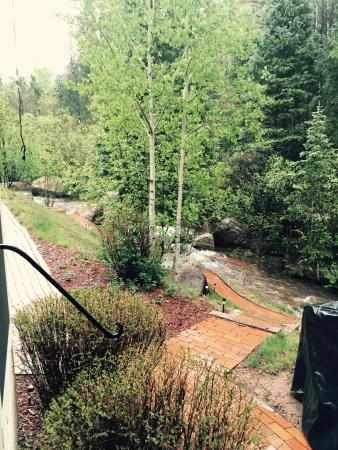 Divide, CO: The brook outside our bedroom door