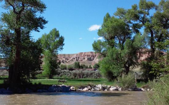 The Longhorn Ranch Lodge & RV Resort: View from our camp site #37