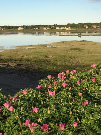 Parc de L'anse de la Roche a Caya: A voir Delon l'exposition du soleil