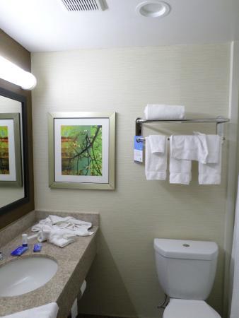 Fairfield Inn New York JFK Airport : Nice Bathroom with shampoo etc