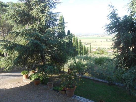 Agriturismo La Maesta: Evening view