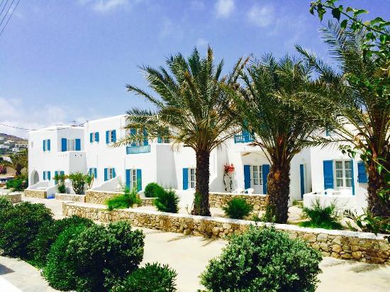 Cyclades Studios & Apartments