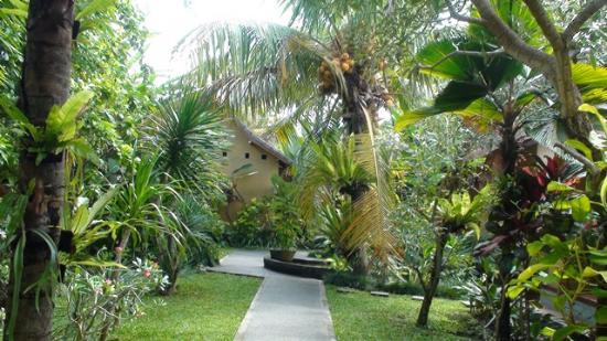 Secret Garden Guest House: Ubud1