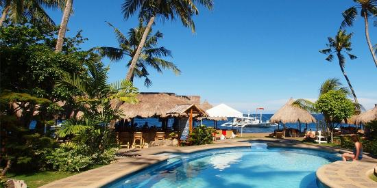Pura Vida Beach & Dive Resort: Pool view