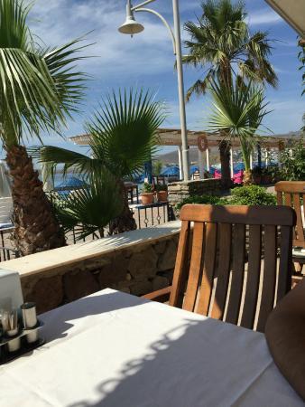 Hotel Amfora: dining area
