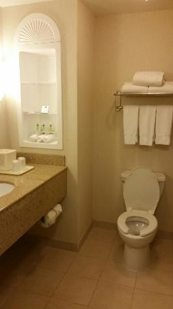 Holiday Inn Express Hotel & Suites Wilmington-Newark : -