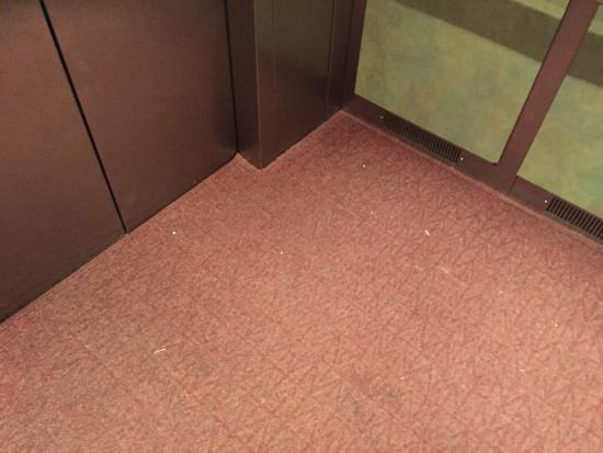 La Quinta Inn & Suites Arlington North 6 Flags Dr : photo0.jpg