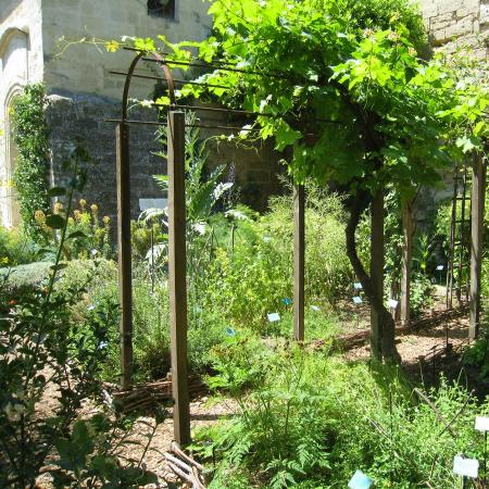 Vue de la tour picture of medieval garden uzes for Le jardin 2 0
