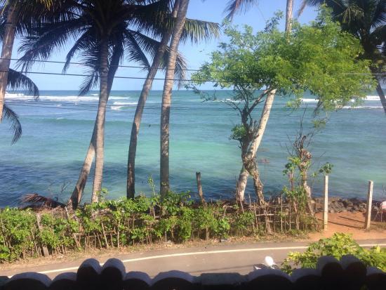 Imagen de Tropi Turtle Guesthouse