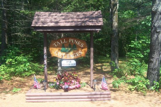 Tall Pines Cottages: welcome to Tall Pines