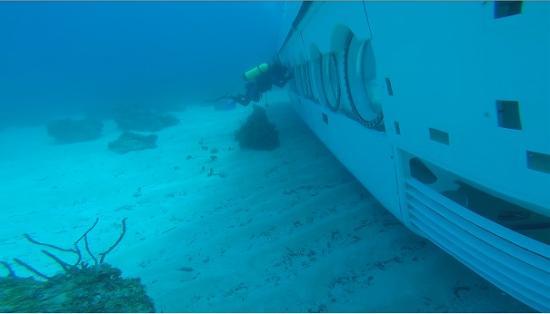 Saint Ann Parish, Jamaica: Rasta-man scuba diver?