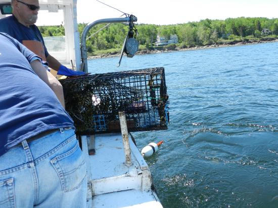 Captain Jack Lobster Boat Adventure: Hauling in the Lobster Trap