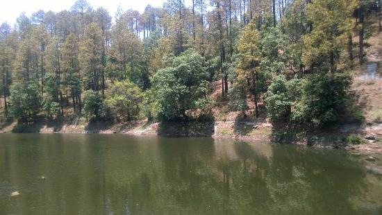 Bhalu Dam Ranikhet | 2019 What to Know Before You Go (with