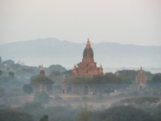 Inside the Shwe Pyi Nann Thanakha Museum - Picture of Bagan