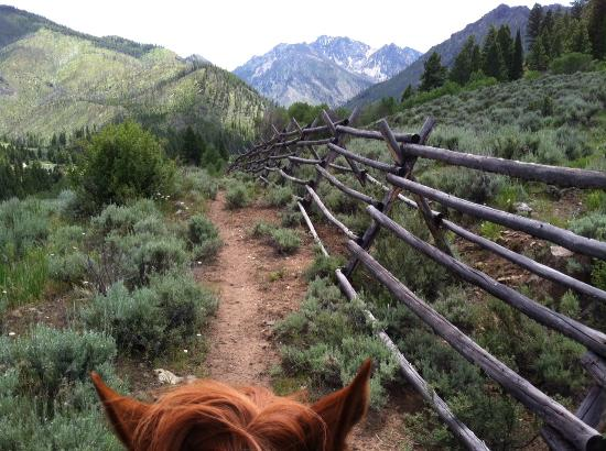 Diamond D Ranch: The view from the top