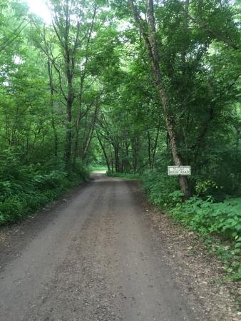 Lost Falls Campground: photo2.jpg