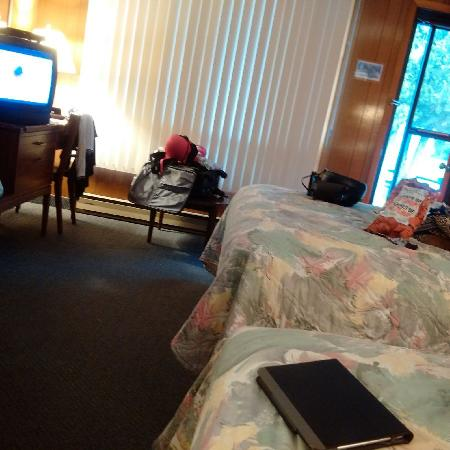 Huron Motor Lodge: room