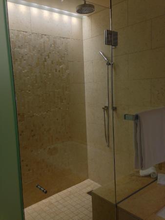 Menlo Park, CA: Large shower