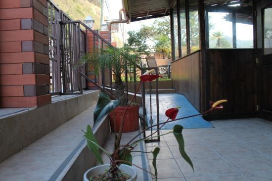 La Casa de la Abuela: Anthurium
