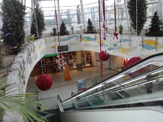 Decoraci n navide a del centro comercial fotograf a de - Decoracion vigo ...