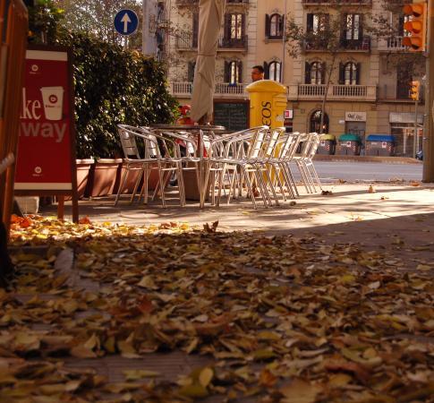 La terraza en oto o picture of en diagonal bar for La terraza barcelona