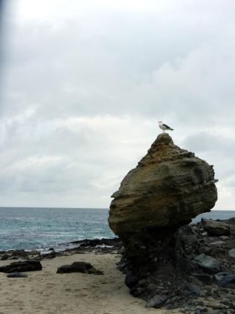 Table Rock Beach: formazione rocciosa sulla spiaggia