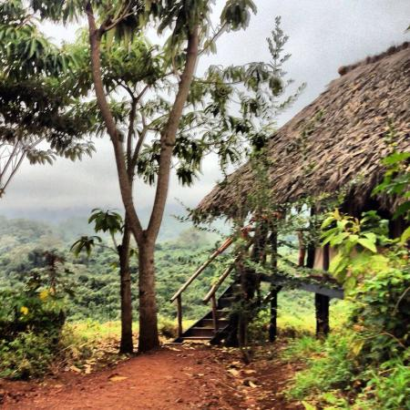 Crater Forest Tented Camp: photo0.jpg