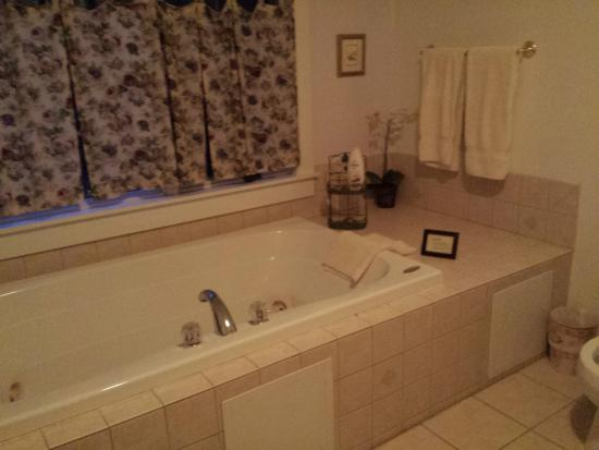 Alpine Haus Bed and Breakfast Inn: Large Jacuzzi