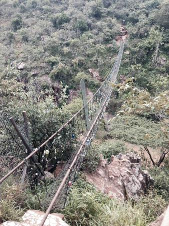 wire bridge for the more adventurous picture of anselm s kitengela