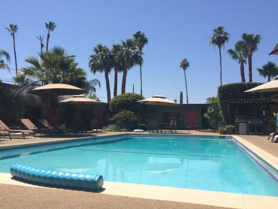 Hummingbird poolside picture of desert riviera hotel for The riviera palm springs ca