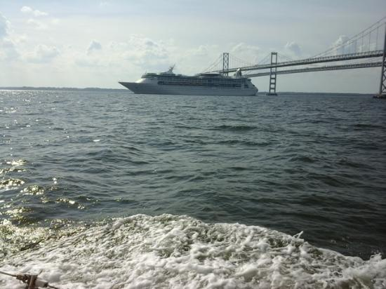 Passing A Cruise Ship Out Of Baltimore And The Bay Bridge - Cruise out of baltimore